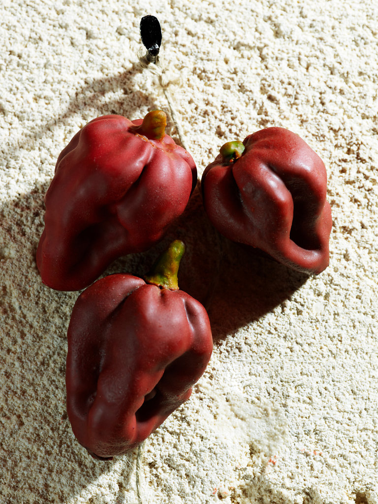 Maties Miralles fake peppers